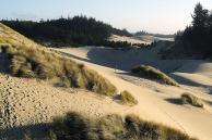 dunes-50068_1280