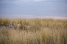 dunes-2141471_1280