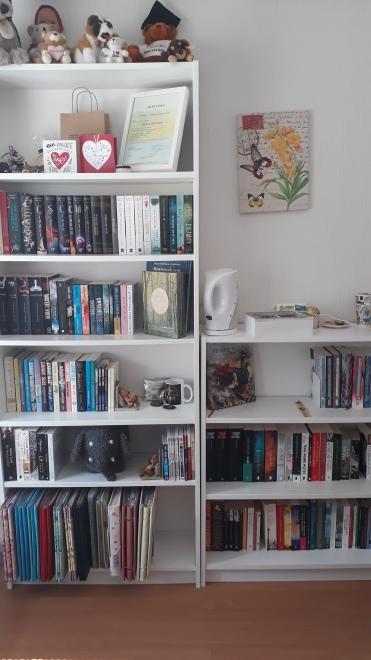 Boekenkast tour – Bookalicious Journey